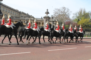 Pretty horsies, oh my. So royal.
