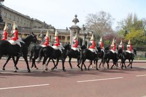 Pretty horsies, oh my. So royal.